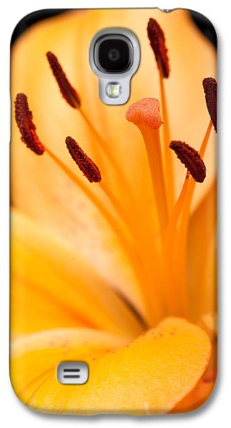 Asian Lily Galaxy S4 Case by Sebastian Musial