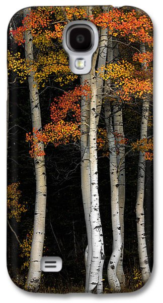 Aspen Contrast Galaxy S4 Case by Leland D Howard