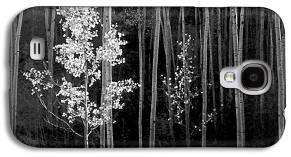 Aspens Northern New Mexico Galaxy S4 Case