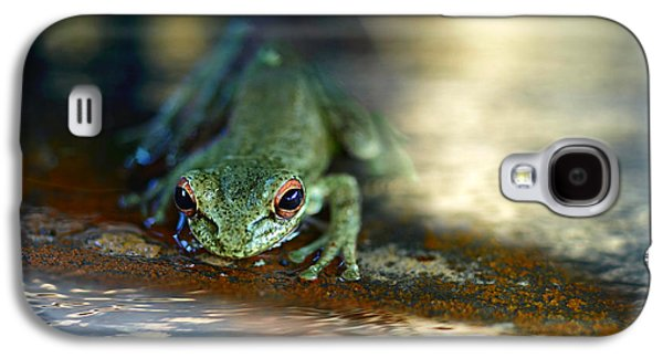 At Swim One Frog Galaxy S4 Case by Laura Fasulo