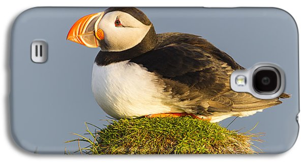 Atlantic Puffin Iceland Galaxy S4 Case by Peer von Wahl