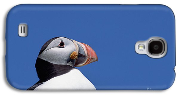 Atlantic Puffin In Breeding Colors Galaxy S4 Case by Yva Momatiuk and John Eastcott