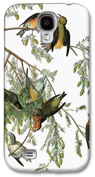 Audubon Crossbill Galaxy S4 Case