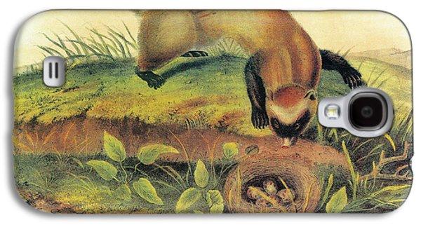 Audubon Ferret Galaxy S4 Case by Granger