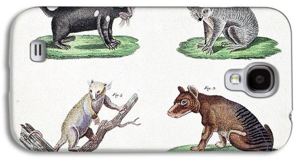 Australasian Marsupials Galaxy S4 Case