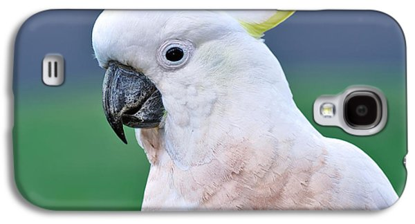 Australian Birds - Cockatoo Galaxy S4 Case by Kaye Menner