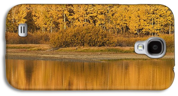Autumn Aspens Reflected In Snake River Galaxy S4 Case by David Ponton