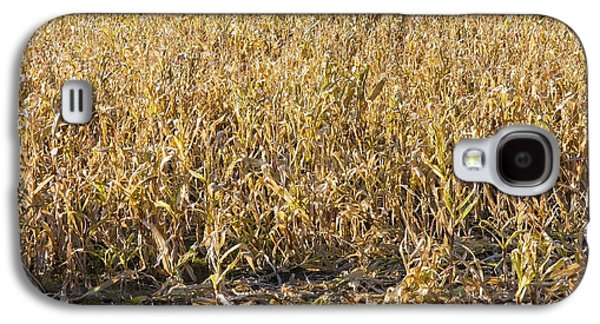 Autumn Cattle Silage Corn In Maine Galaxy S4 Case by Keith Webber Jr