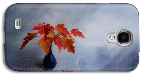 Autumn Colors Galaxy S4 Case by Veikko Suikkanen