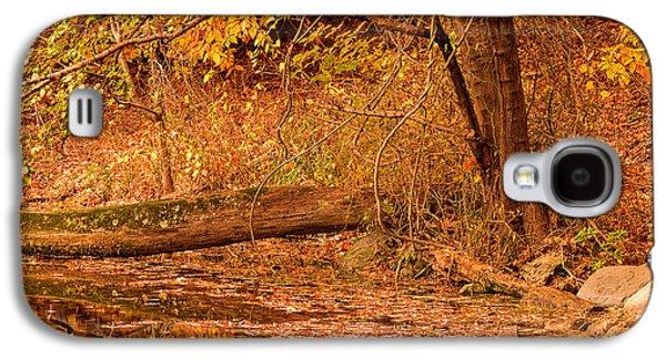 Autumn Day Galaxy S4 Case by Lourry Legarde