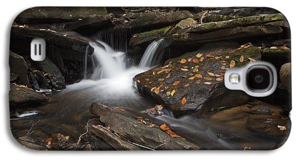 Autumn Falls Galaxy S4 Case