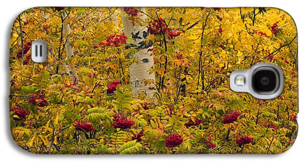 Autumn Forest Colors Galaxy S4 Case by Leland D Howard