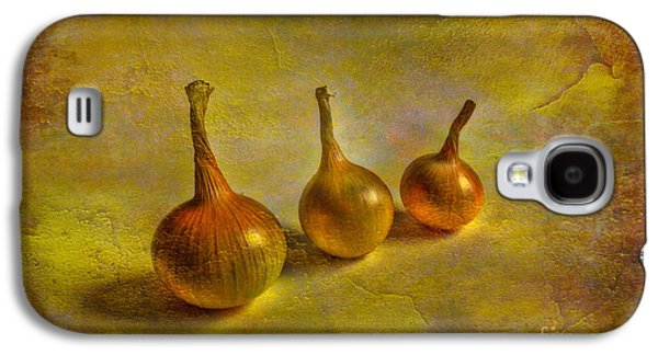 Vegetables Galaxy S4 Case - Autumn Harvest by Veikko Suikkanen
