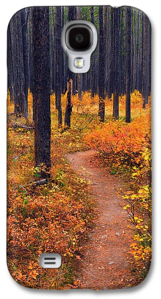 Autumn In Yellowstone Galaxy S4 Case
