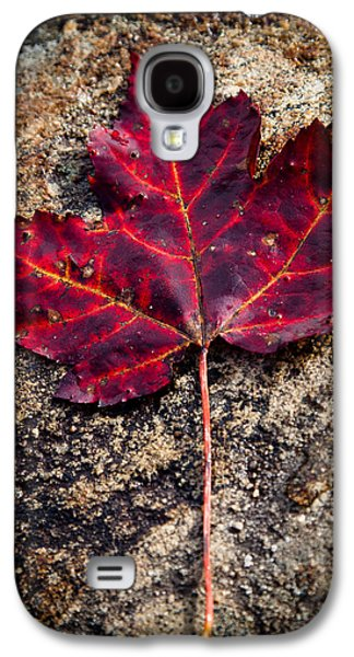 Autumn Leaf Galaxy S4 Case by David Patterson