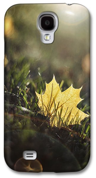 Autumn Leaf Sunset Galaxy S4 Case by Scott Norris