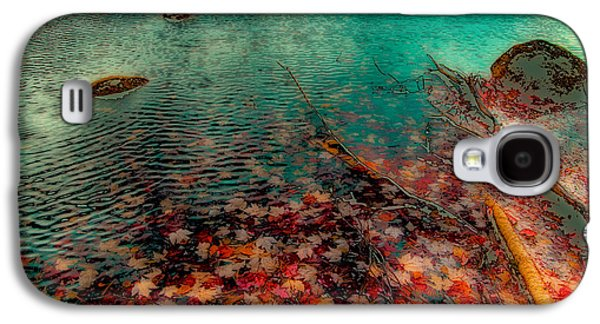 Autumn Leaves On Cary Lake - Abstract Galaxy S4 Case by David Patterson