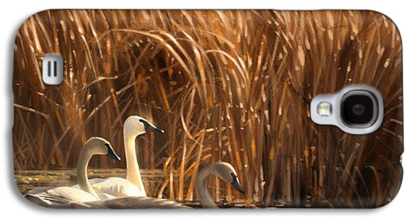 Swan Galaxy S4 Case - Autumn Light- Trumpeter Swans by Aaron Blaise