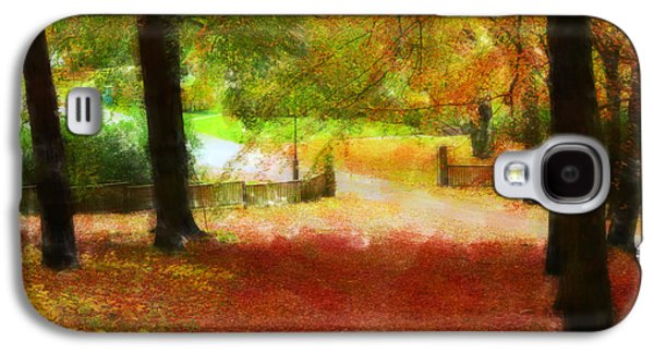 Autumn Park With Trees Of Beech Galaxy S4 Case by Tommytechno Sweden