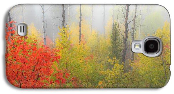 Autumn Silence Galaxy S4 Case by Leland D Howard