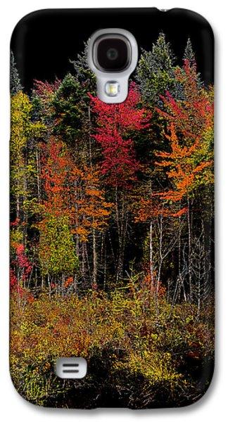 Autumn Splendor In The Adirondacks Galaxy S4 Case by David Patterson