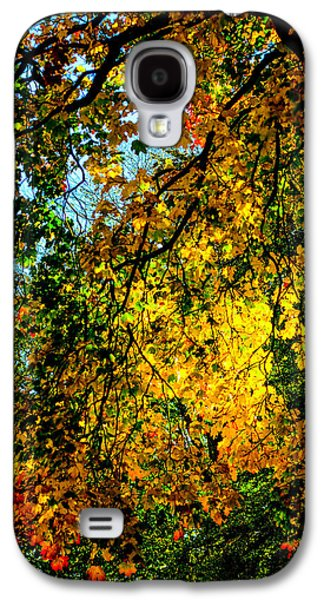 Autumn Tree  Galaxy S4 Case by Tommytechno Sweden