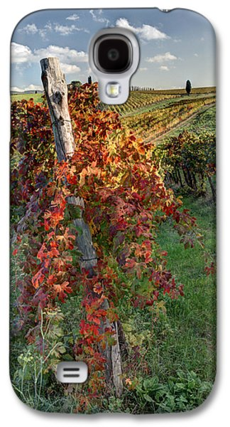 Autumn Vines Galaxy S4 Case by Eggers Photography