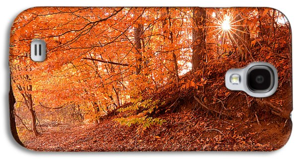 Autumn Walk Galaxy S4 Case by Lourry Legarde