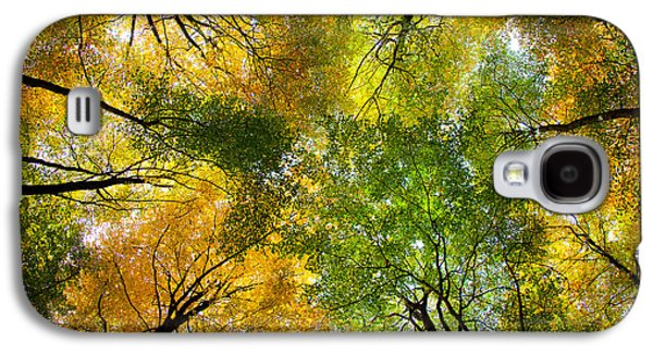 Autumnal Display Galaxy S4 Case