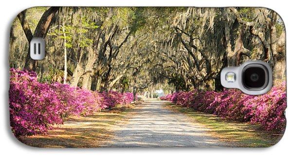 azalea lined road in Spring Galaxy S4 Case
