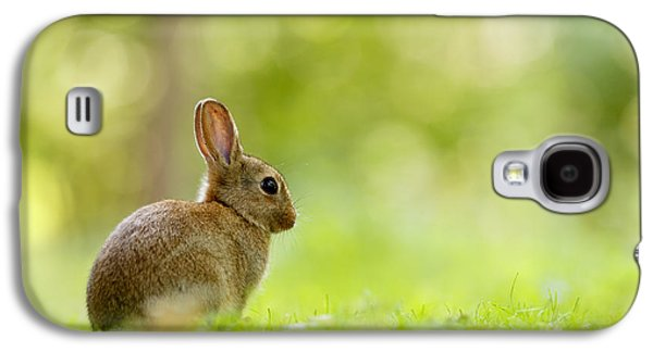 Baby Bunny In The Forest Galaxy S4 Case