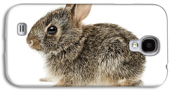 Baby Cottontail Bunny Rabbit Galaxy S4 Case