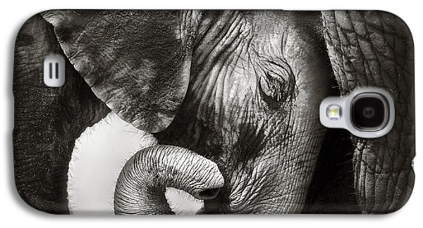 Baby Elephant Seeking Comfort Galaxy S4 Case by Johan Swanepoel