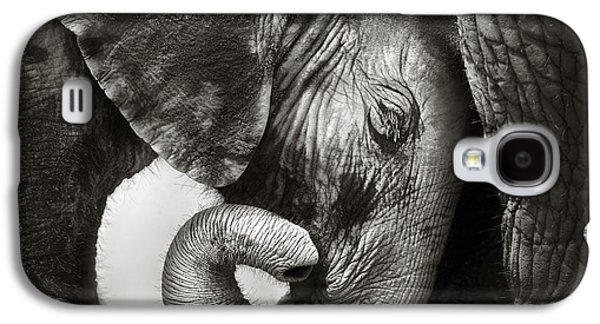 Cow Galaxy S4 Case - Baby Elephant Seeking Comfort by Johan Swanepoel