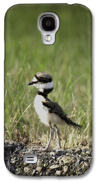 Baby Killdeer 2 Galaxy S4 Case by Thomas Young