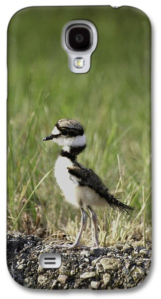 Killdeer Galaxy S4 Case - Baby Killdeer 2 by Thomas Young