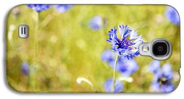 Bachelor Buttons Glowing Galaxy S4 Case by Belinda Greb
