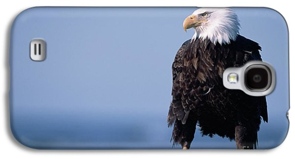 Bald Eagle At Low Tide Galaxy S4 Case