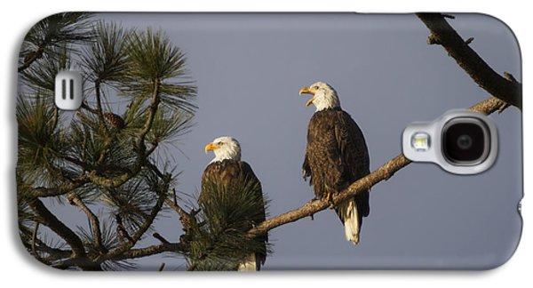 Bald Eagle Couple Galaxy S4 Case by Mark Kiver