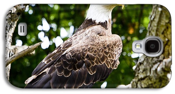 Galaxy S4 Case featuring the photograph Bald Eagle by Ricky L Jones