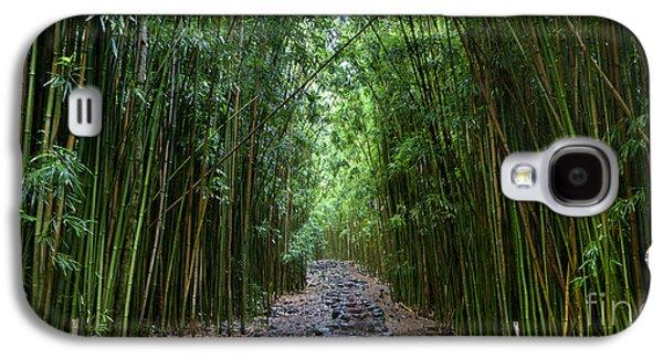 Bamboo Forest Trail Hana Maui Galaxy S4 Case