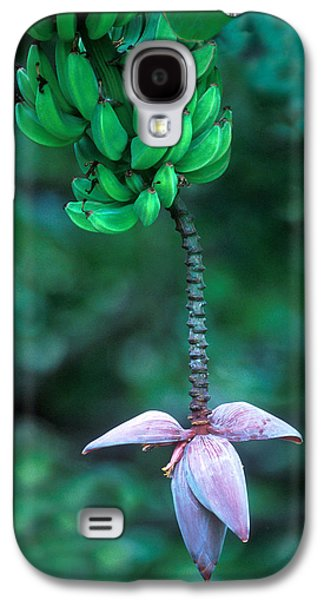 Banana Flower Galaxy S4 Case by Panoramic Images