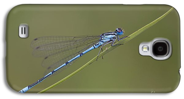 Banded Agrion Damselfly Galaxy S4 Case