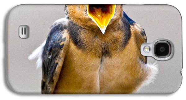 Galaxy S4 Case featuring the photograph Barn Swallow by Ricky L Jones