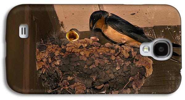 Barn Swallow Galaxy S4 Case by Ron Sanford
