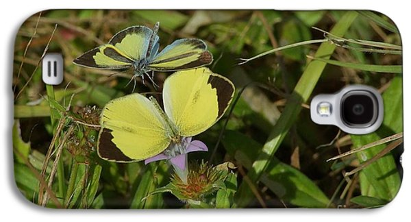 Barred Yellow Butterflies Galaxy S4 Case by Lynda Dawson-Youngclaus