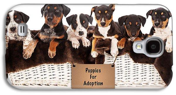 Basket Of Mixed Breed Puppies Galaxy S4 Case by Susan Schmitz