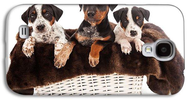 Basket Of Rottweiler Mixed Breed Puppies Galaxy S4 Case by Susan Schmitz