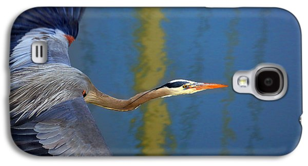 Bay Blue Heron Flight Galaxy S4 Case by Robert Bynum