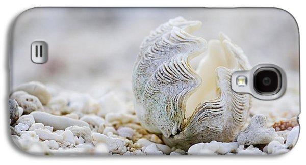 Beach Clam Galaxy S4 Case by Sean Davey